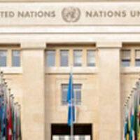 Curso online premium ONU wikiscadi