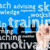 Curso online habilidades directivas wikiscadi